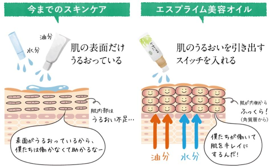 【口コミ】エスプライム美容オイルは効果なし?99.9%が美容成分の美容オイルって本当?